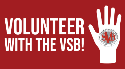 Volunteer with the VSB